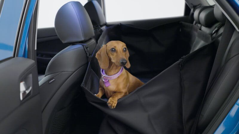 Hyundai_Accessories_Masonry_Rearseat_Pet_Cover_800x450.jpg