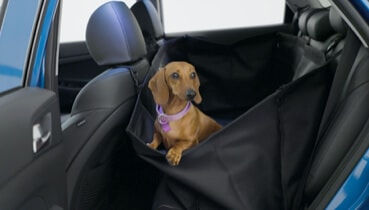 Hyundai_Accessories_Rearseat_Pet_Cover_369x210.jpg