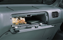 image of county glove box