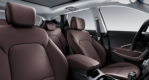 Dark brown color seats interior