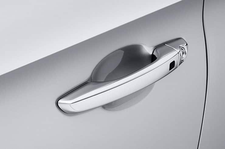 Chromed door handles