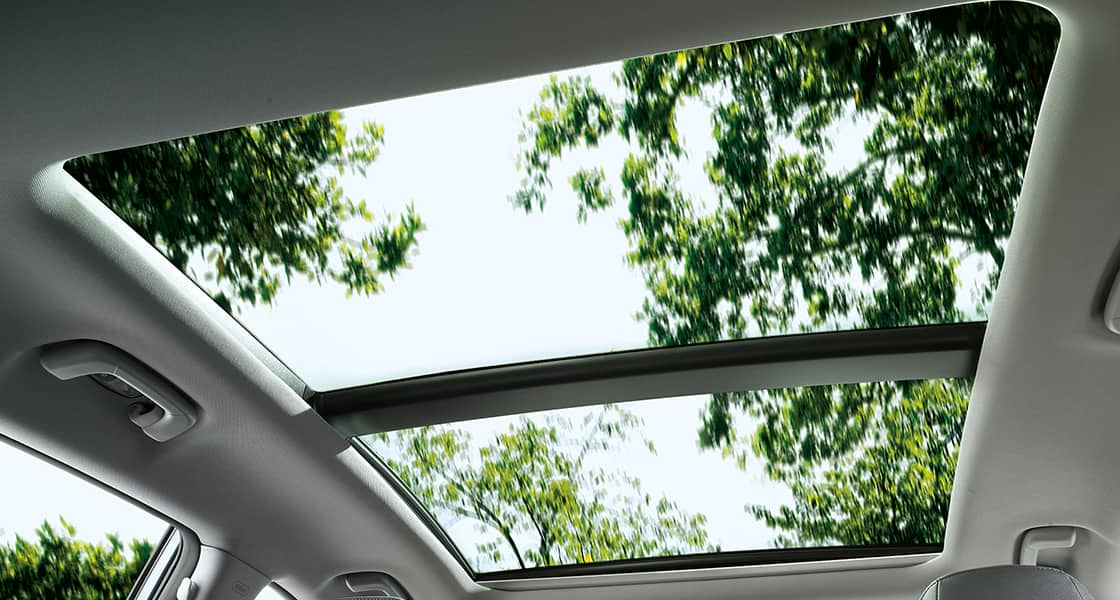 Trees and sky view through opened sunroof