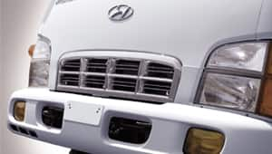 image of bumper, head lamps and radiator grill