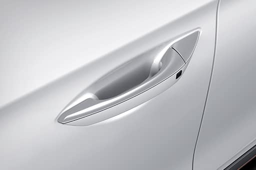 Chrome outside door handle