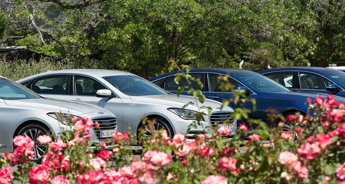 Front view of Genesis lined up at the test drive parking with flowers
