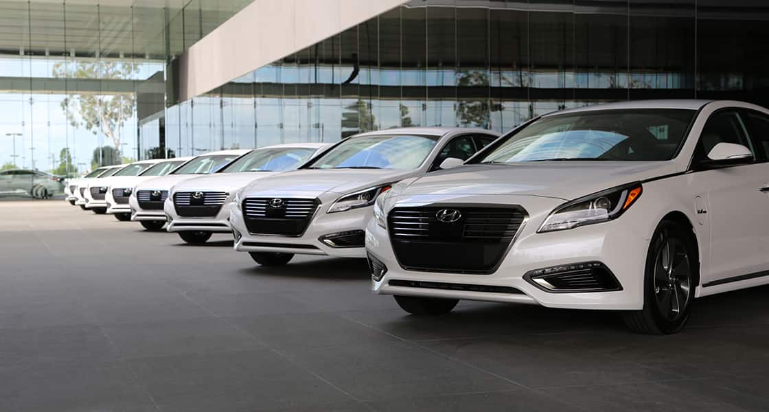 Side-front view of many white Sonata Plug-in Hybrid lined up in front of building