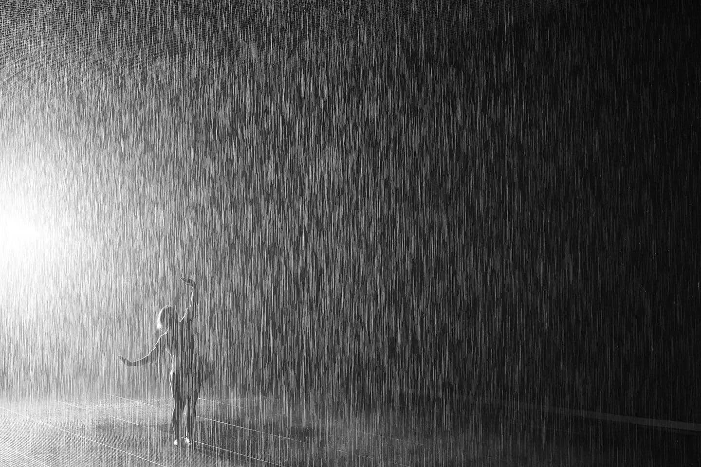 Hyundai Motor and LACMA's first project 'Rain Room' exhibit opens in Los Angeles