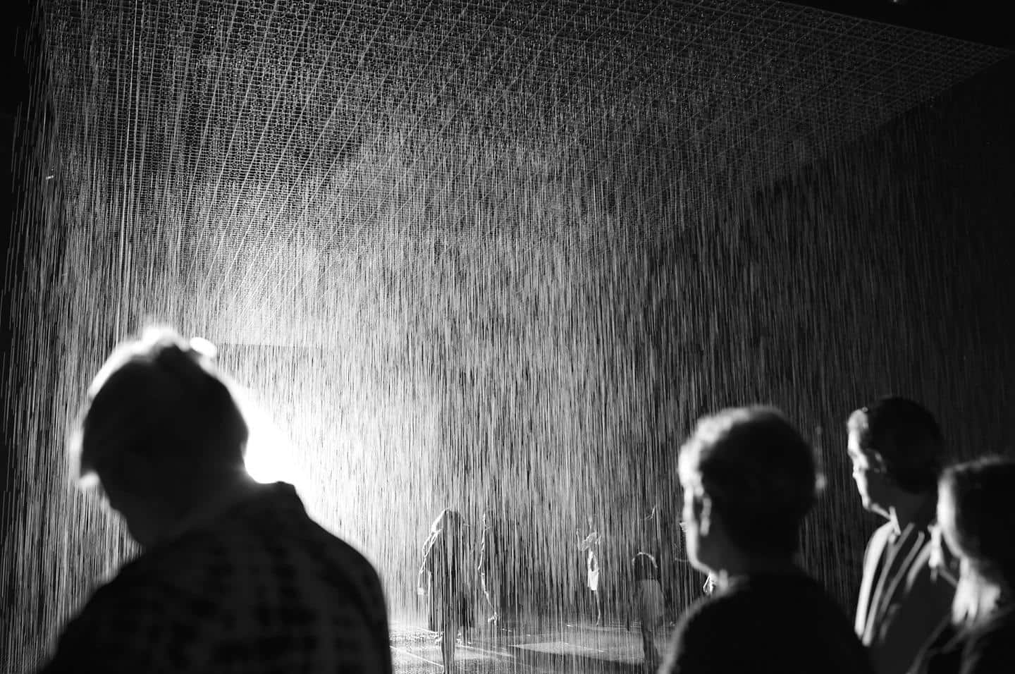 Hyundai Motor and LACMA's first project 'Rain Room' exhibit opens in Los Angeles 3