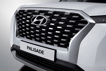 Palisade Chrome radiator grille
