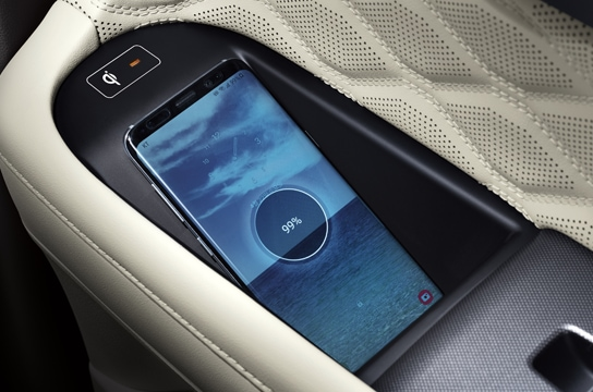 Palisade Wireless charging in door panels (second row)